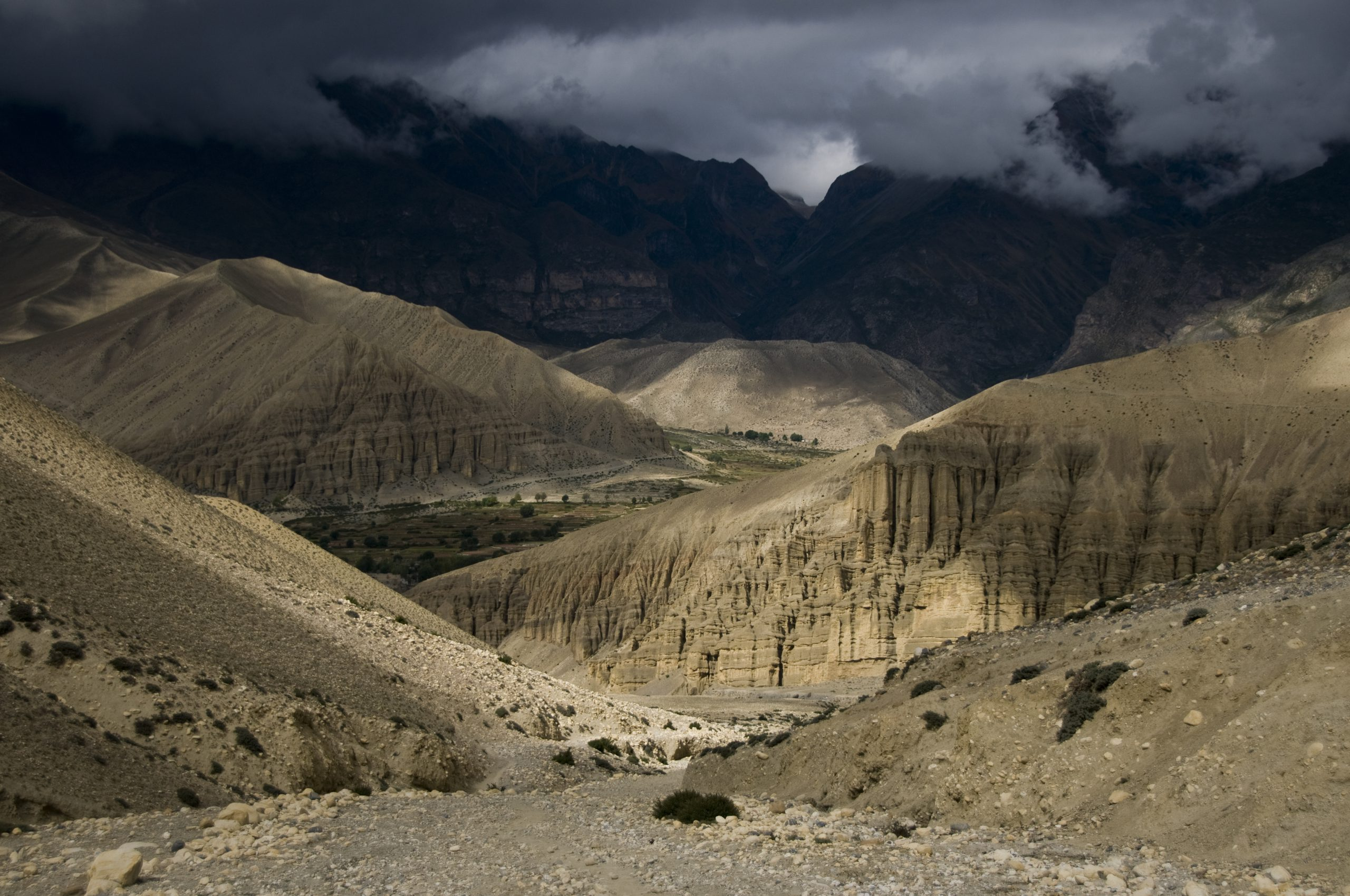 Kingdom of Mustang